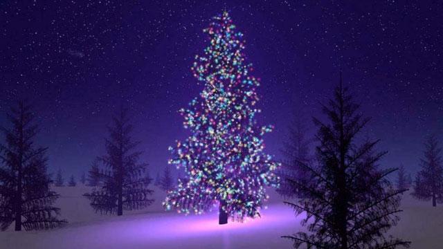 Buon Natale Perche Sia Quello Buono.W L Albero Di Natale Ma Perche Tristezza Ansia E Nevrosi Natalizia Albedoimagination