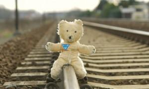 orsetto treno